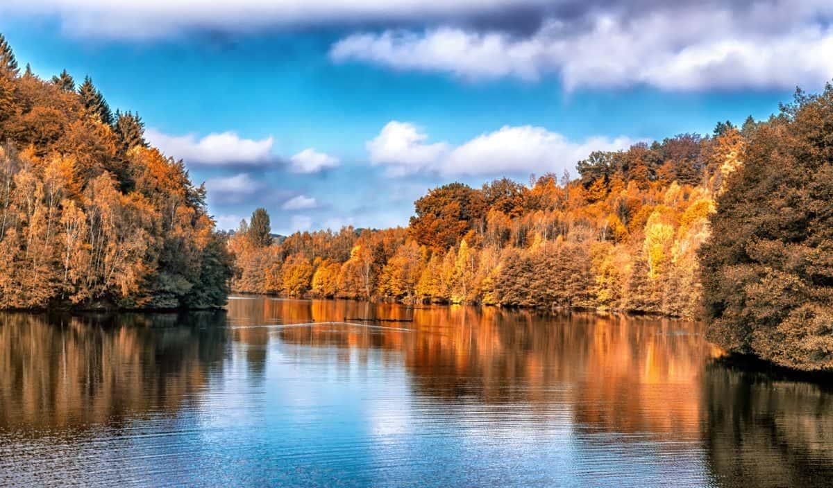 agua, paisaje, reflejo, cielo azul, nube, naturaleza, lago, madera