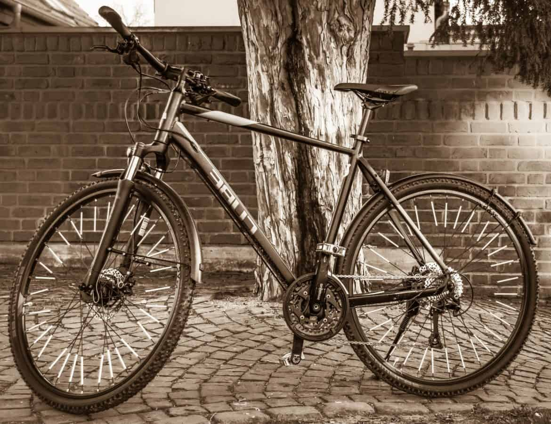 vélo de montagne, monochrome, roue, véhicule, motard, vélo, guidon