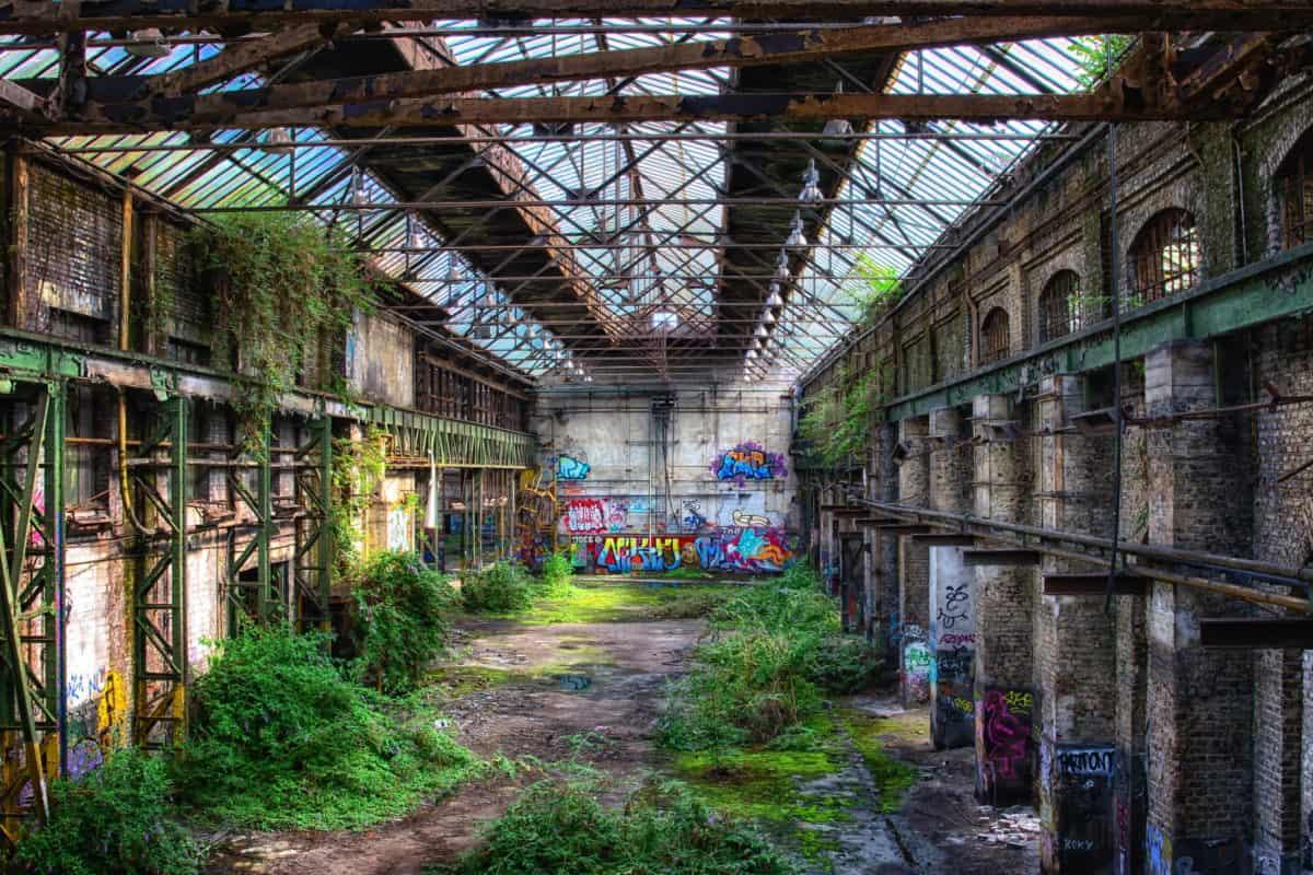 entrepôt, hall, construction, intérieur, plante, vieux