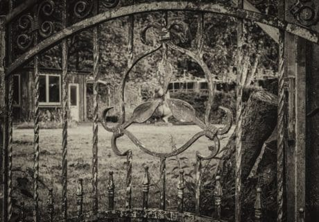 iron, object, fence, metal, monochrome, steel, nature