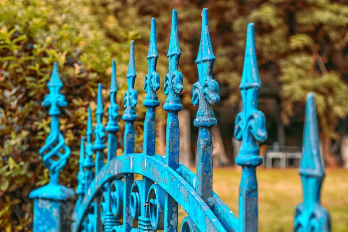 front door, iron, fence, metal, steel, wood, nature, antique