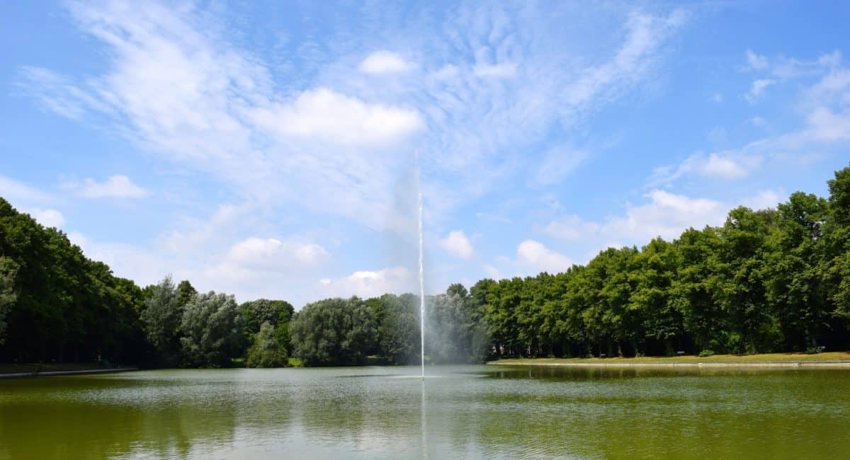 landscape, summer, lake, water, nature, tree, sky, fountain