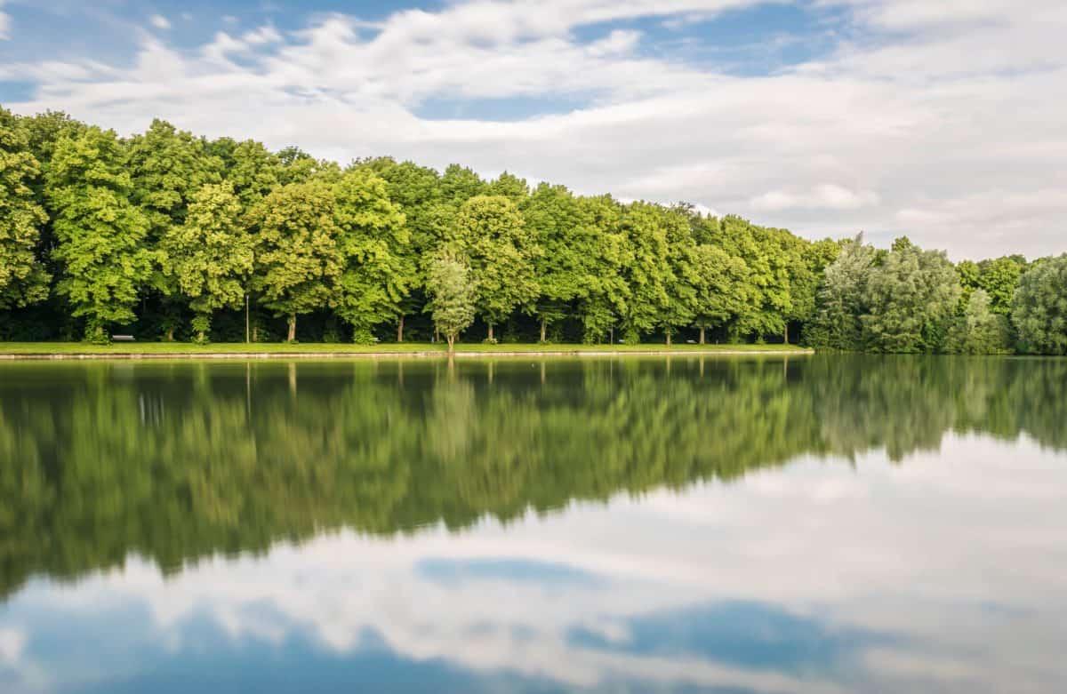 l'eau, lac, nature, été, réflexion, arbre, paysage