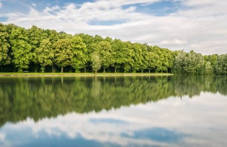 water, lake, nature, summer, reflection, tree, landscape