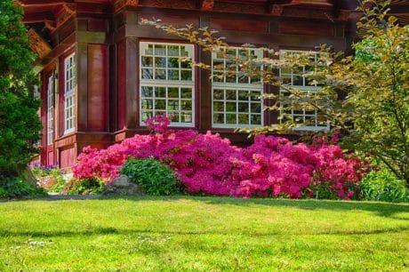 pelouse, fleur, jardin, architecture, maison