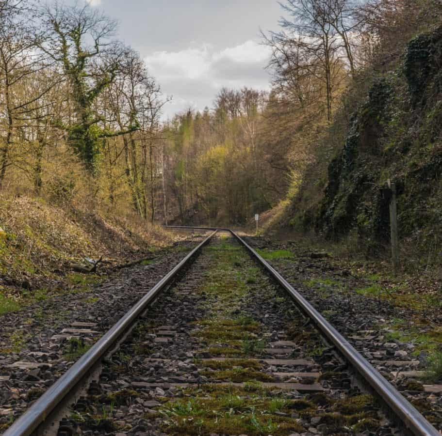 ferroviaria, prospettiva, all'aperto, luce del giorno, strada, curva, foresta