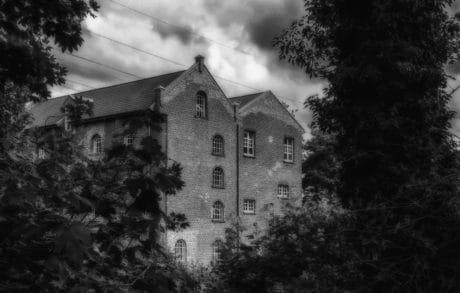 casa, bianco e nero, architettura, casa, struttura, vecchia, albero, all'aperto