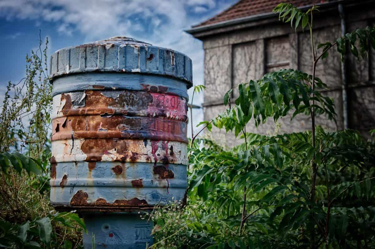 house, plant, metal, rust, blue sky