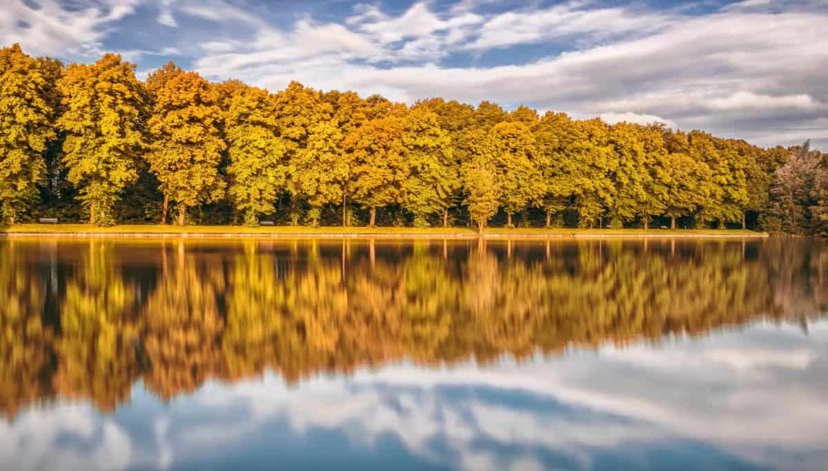вода, природа, пейзаж, дърво, гора, есен, облак, синьо небе, езеро