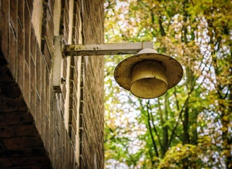 street lamp, urban, old, tree, object, nature, outdoor