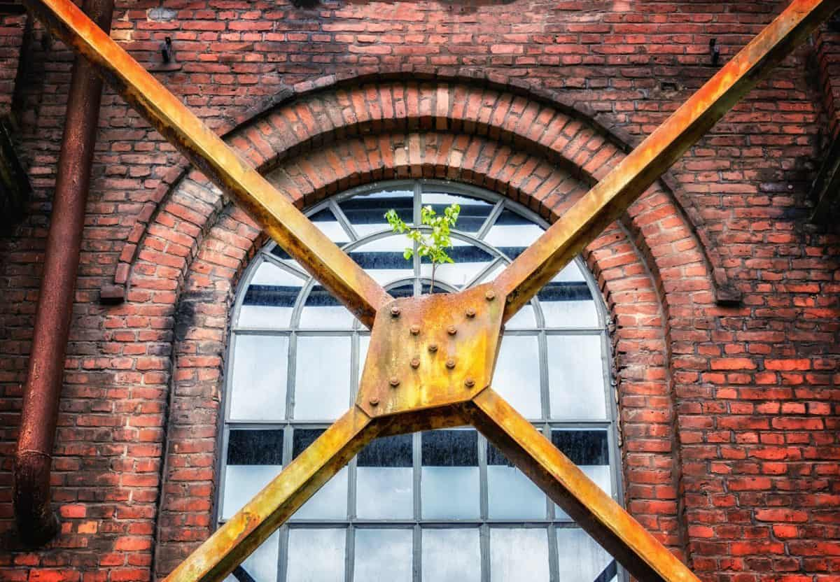 plant, metal, window, brick, architecture, construction