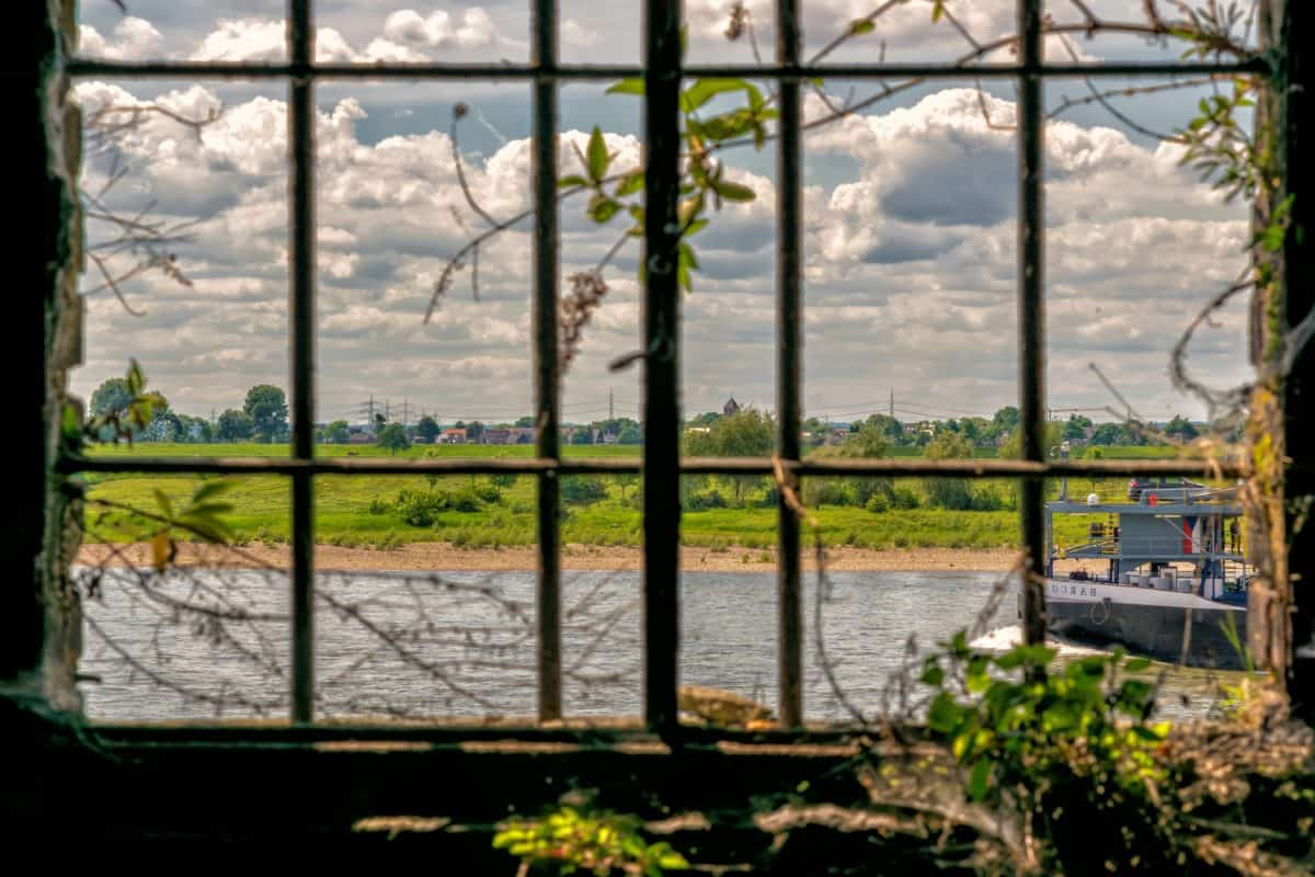window, river, boat, grass, grid