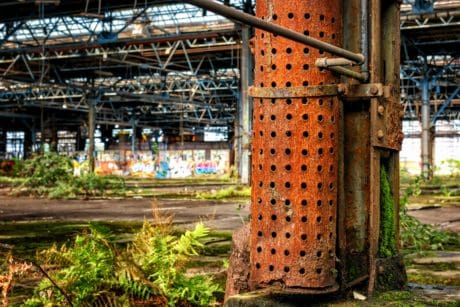 plant, grass, concrete, industry, old, warehouse, factory
