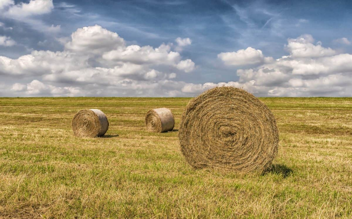 countryside, landscape, field, agriculture, straw, blue sky, meadow