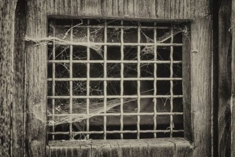 spiderweb, window, old, architecture, building, monochrome
