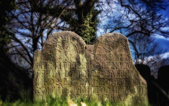 Baum, Natur, Friedhof, Stein, Grabstein, Denkmal, im freien