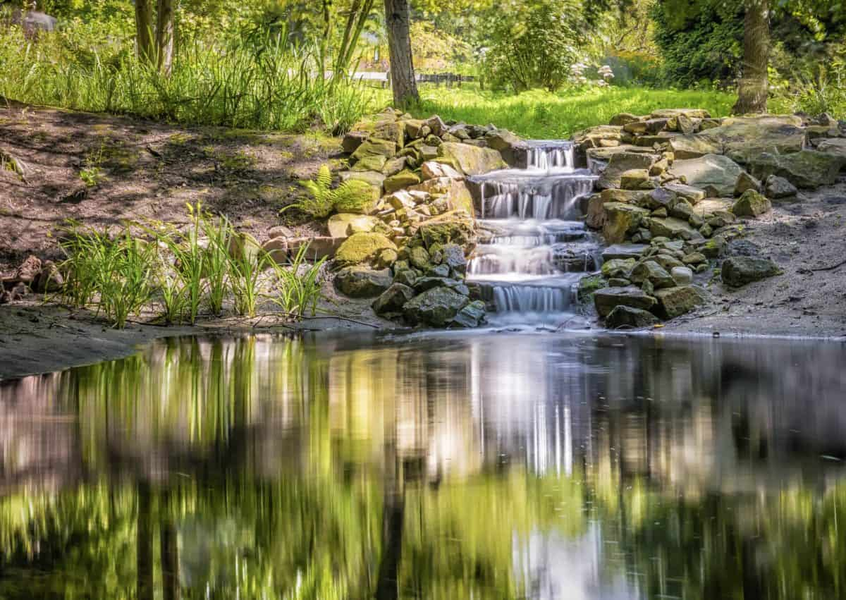 voda, řeka, proud, příroda, strom, krajina, rybník