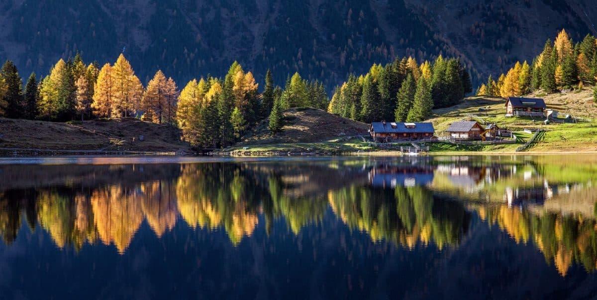 river, wood, reflection, lake, water, nature, tree