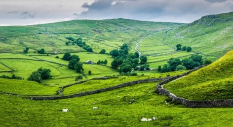 landscape, grass, agriculture, field, nature, countryside, hill