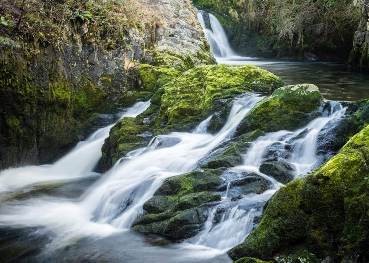 natura, acqua, paesaggio, fiume, torrente, cascata, legno, muschio
