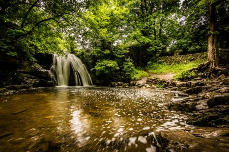 landscape, nature, stream, water, wood, waterfall