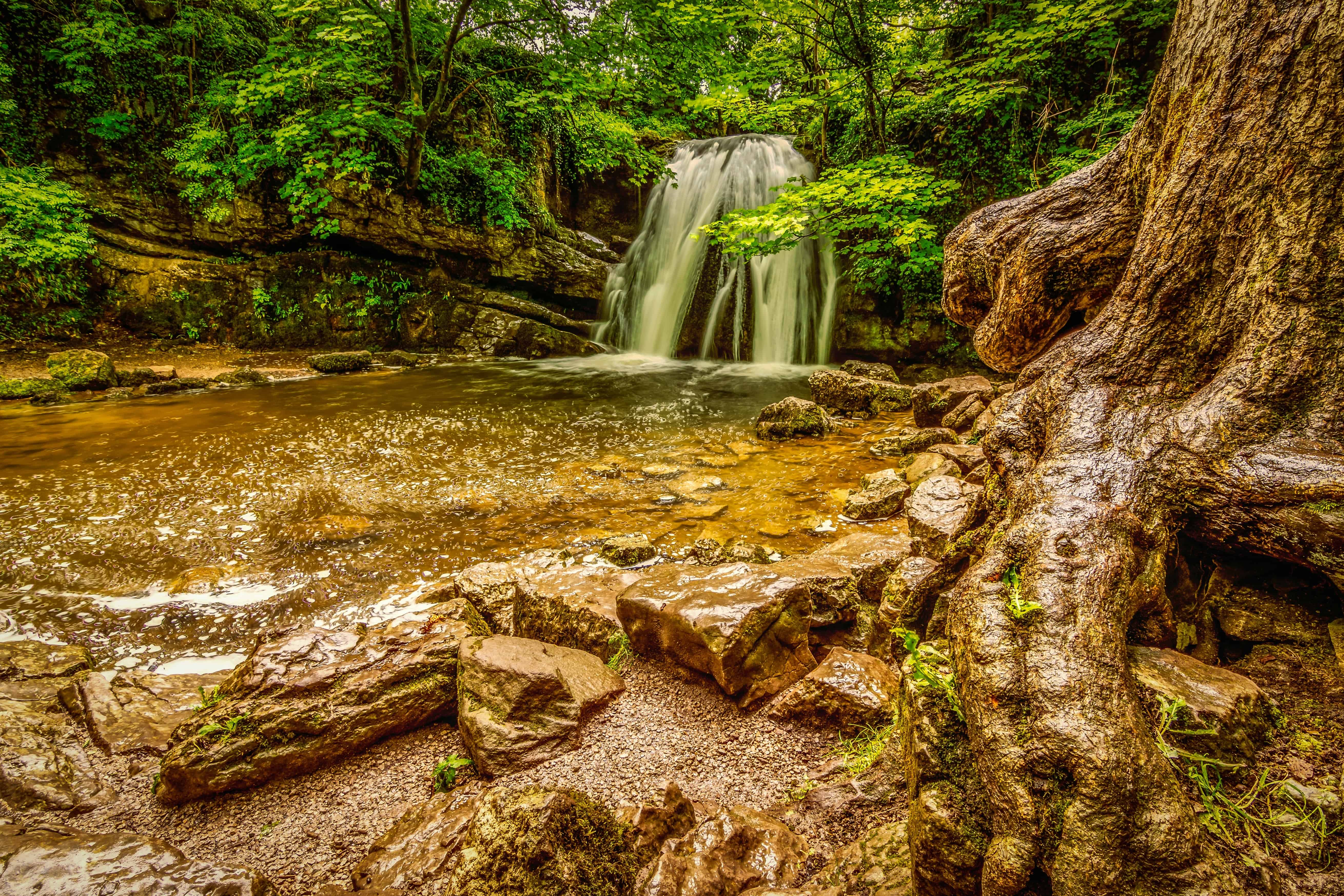 free picture waterfall nature landscape stream leaf