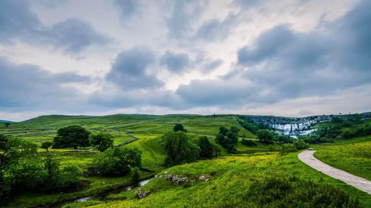 erba, natura, paesaggio, collina, campo, albero, cielo blu, campagna