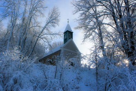 tree, landscape, church, frost, branch, snow, winter, frozen, cold
