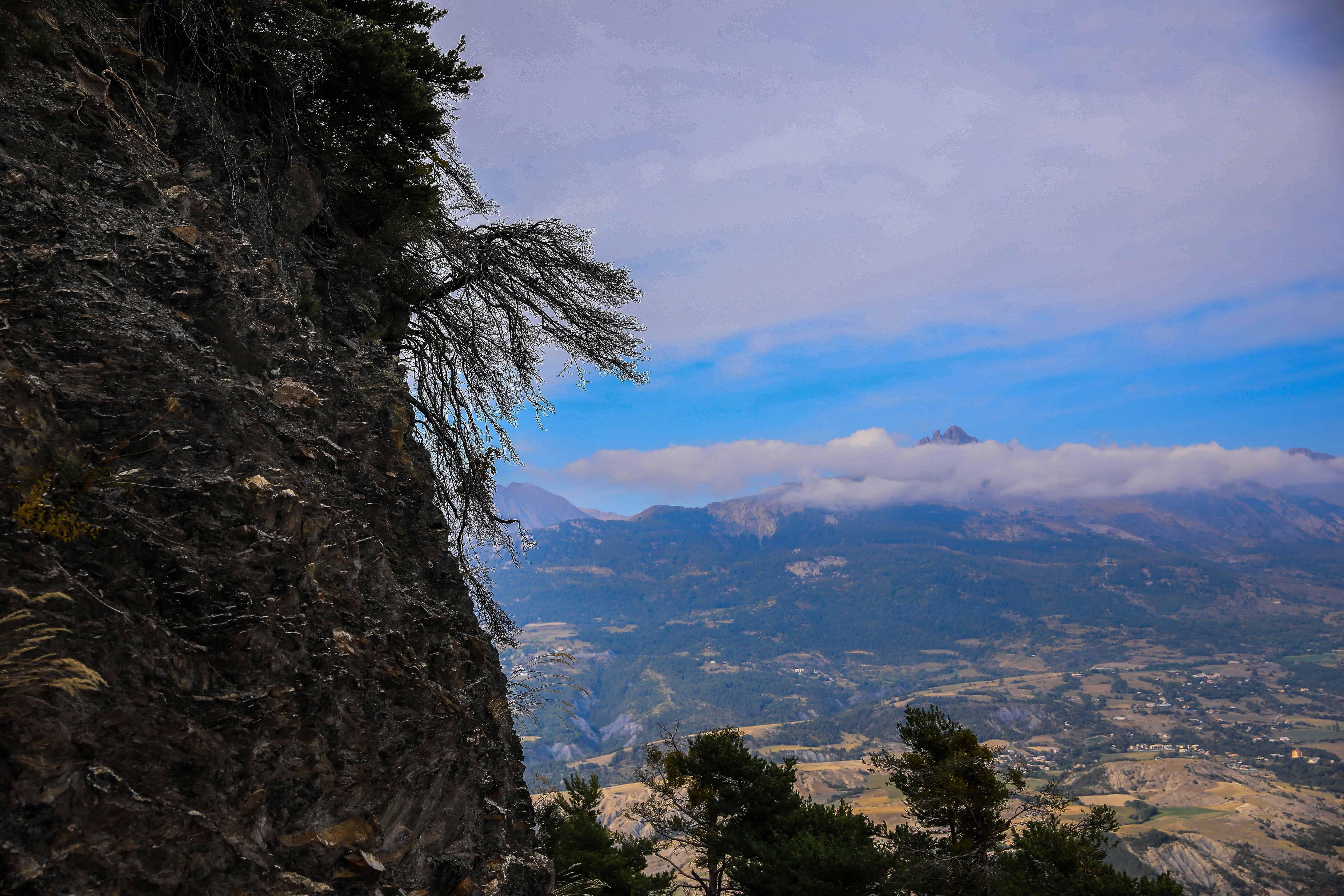 nature montagne arbre ciel paysage extrieur - Arbre Ciel