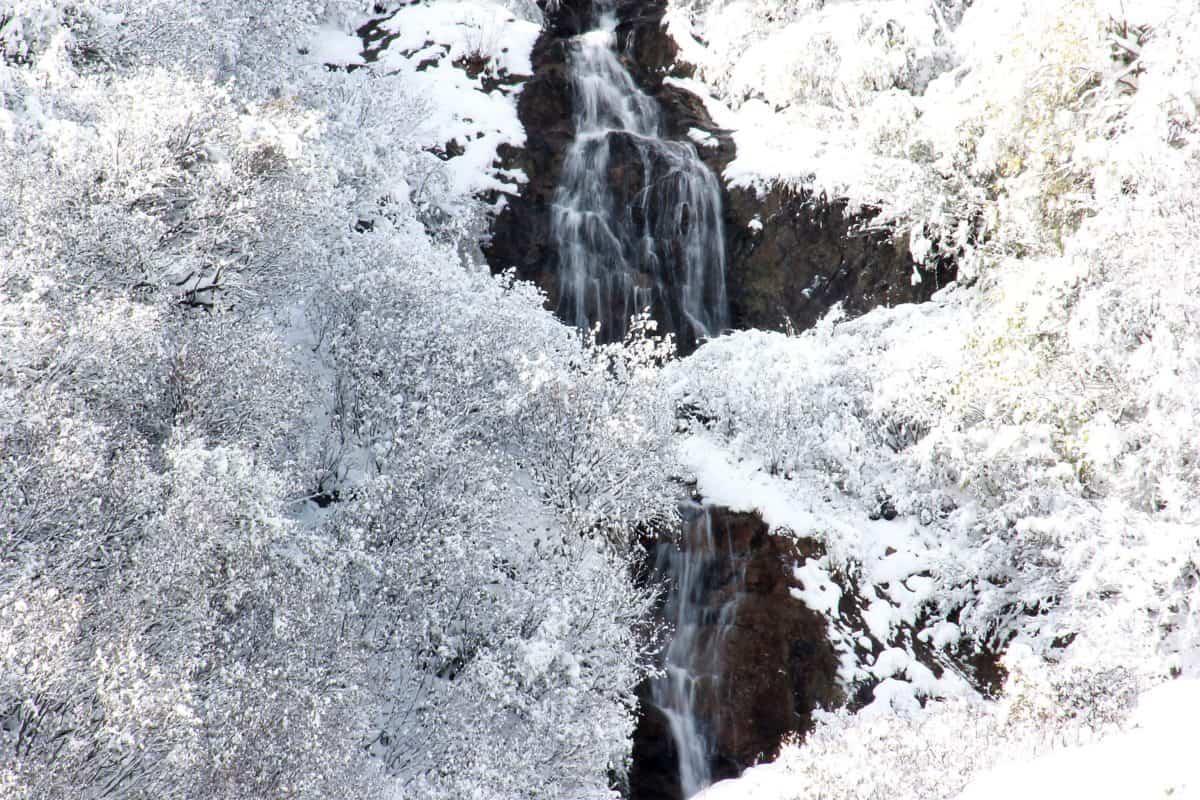 Winter, Eis, Kälte, Schneeflocke, Natur, gefroren, Frost