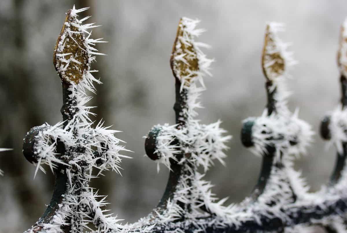 cerca, copo de nieve, hierro, acero, metal, hielo, nieve, invierno