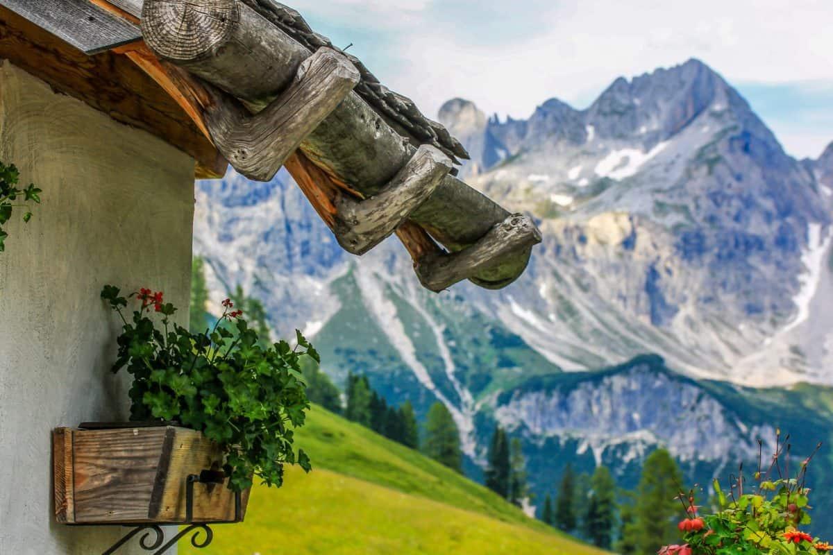 montagna, cielo blu, vaso di fiori, natura, paesaggio, neve, all'aperto, cielo blu