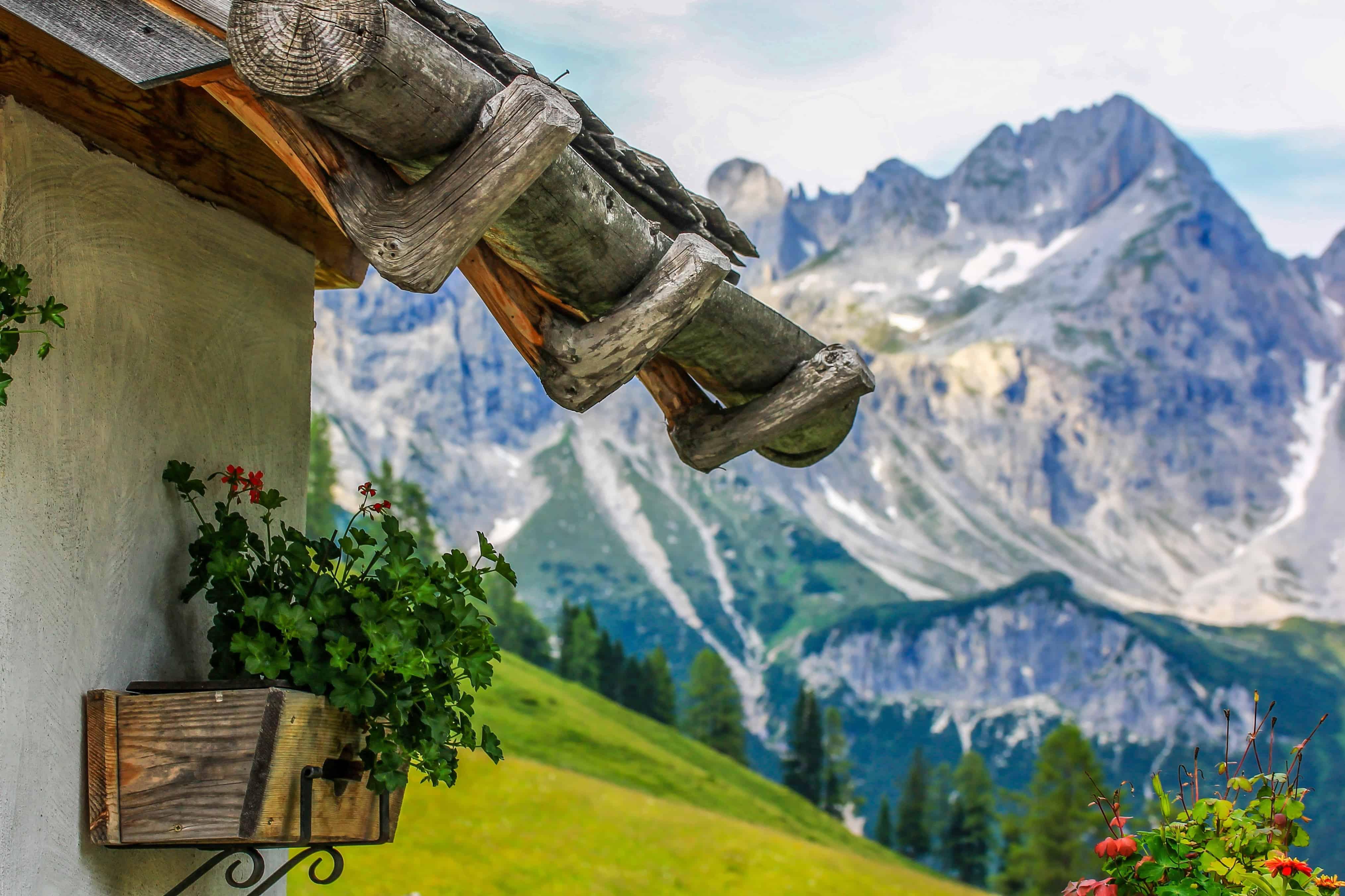 Fiori Da Giardino In Montagna foto gratis: montagna, cielo blu, vaso di fiori, natura