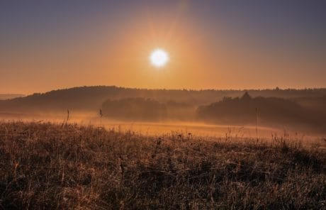 landscape, field, fog, sun, sunset, nature, sky, outdoor