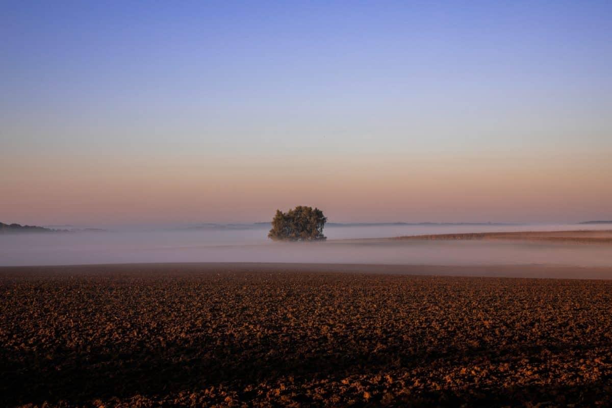 Sonnenuntergang, Dämmerung, Landschaft, Nebel, Wasser, Himmel