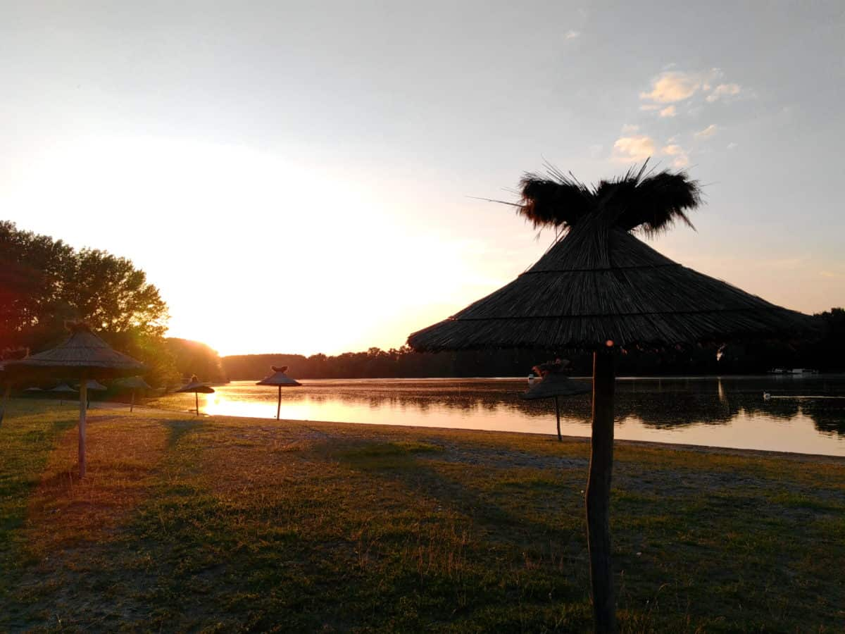 coucher de soleil, eau, paysage, arbre, aube, ciel, herbe, en plein air