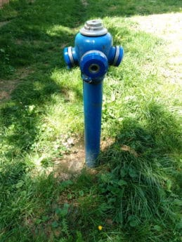 hydrant, object, metal, summer, grass, garden, instrument, mechanism