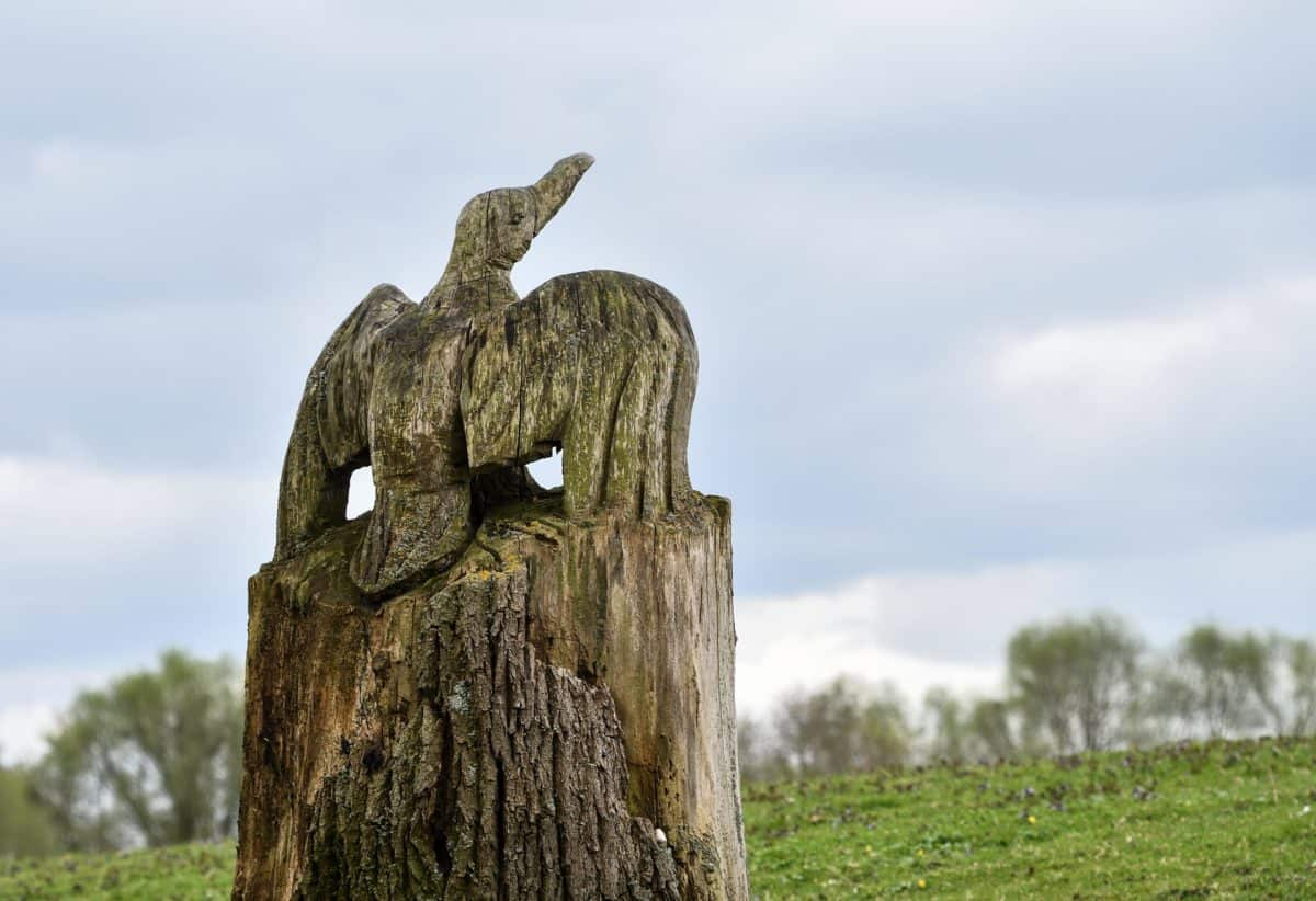 sculpture, wood, art, bird, nature, sky, outdoors