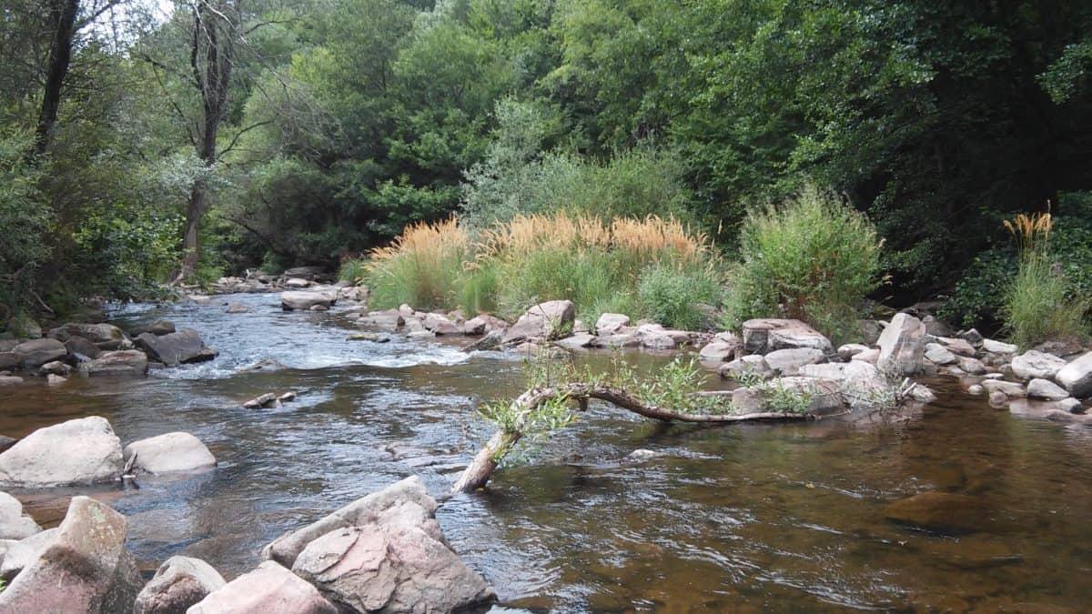 Flussufer, Holz, Strom, Landschaft, Wasser, Fluss, Baum, Natur