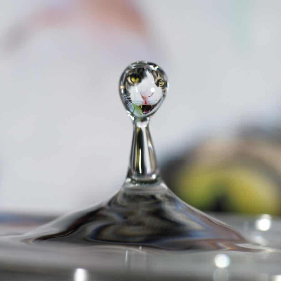 Reflexion, Wasser, Flüssigkeit, Detail, Makro