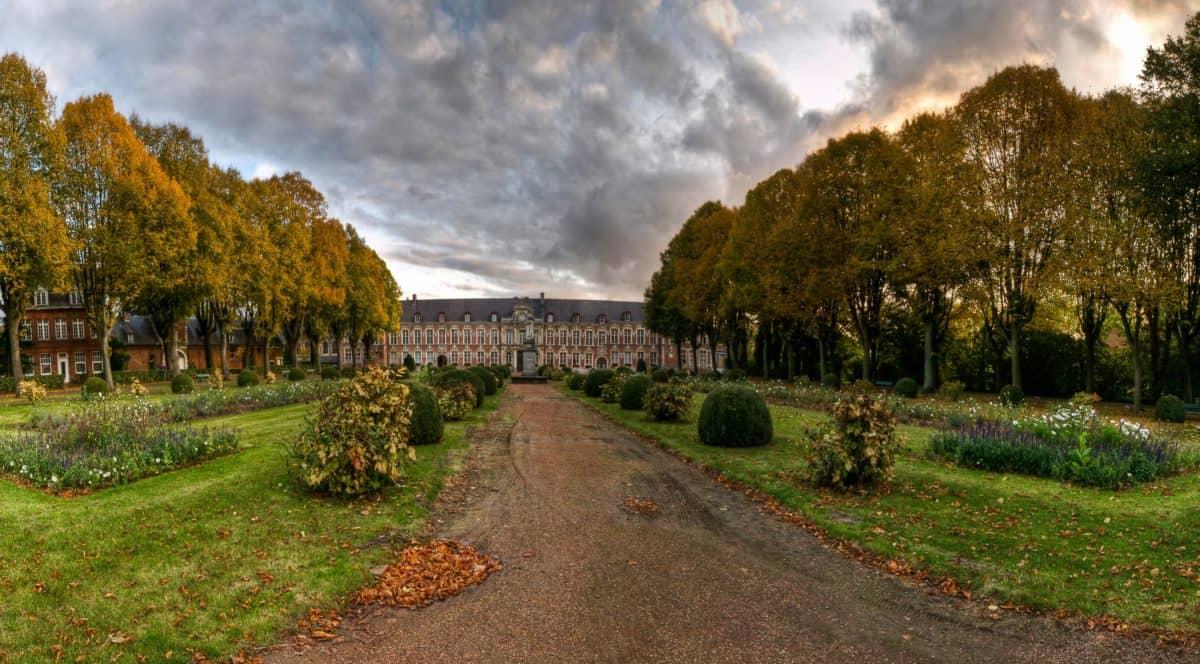 Castello, architettura, strada, autunno, natura, paesaggio del giardino, albero, all'aperto, cielo