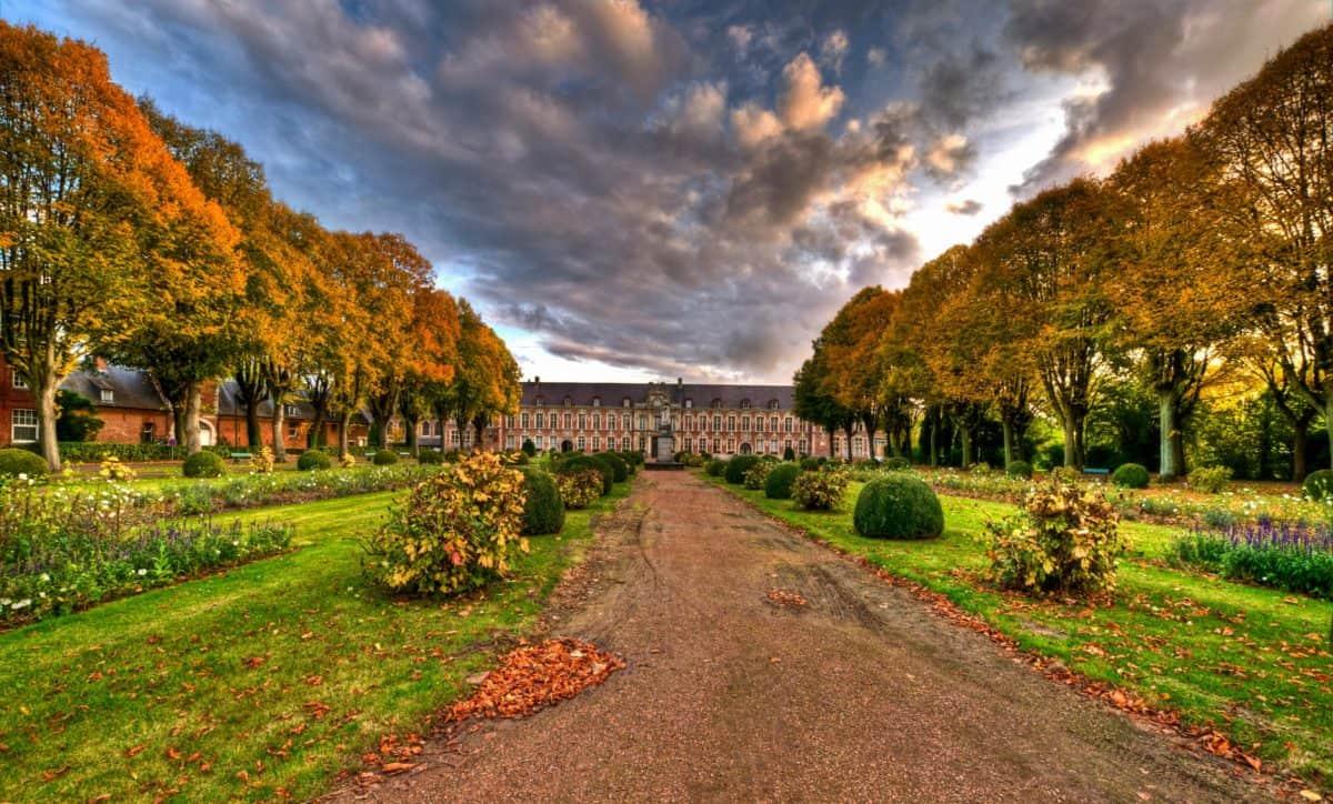 paisaje, arquitectura, parque, árbol, césped, camino, otoño