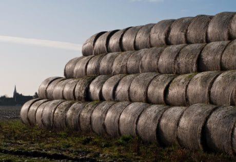 небе, трева, селското стопанство, сено, Открит