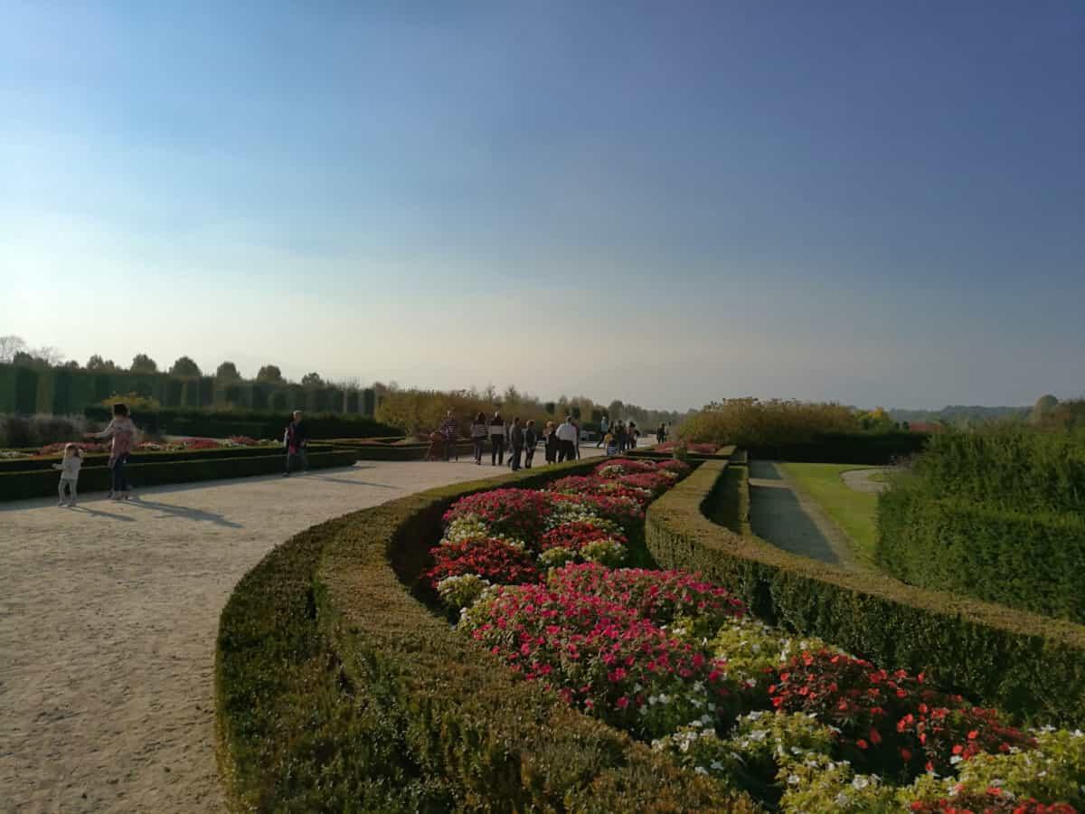 Градина, синьо небе, тълпата, пейзаж, дърво, трева, небе, Открит