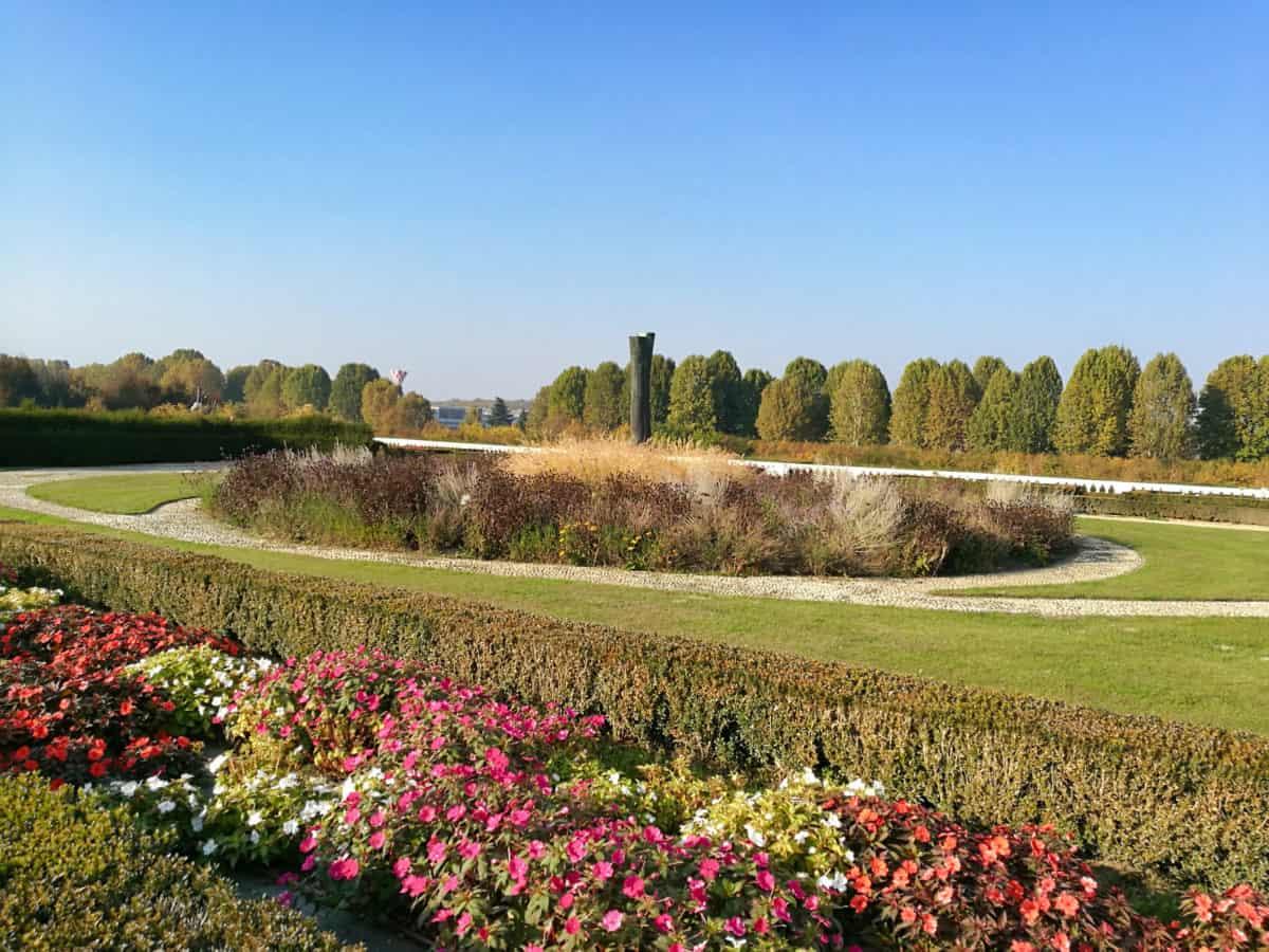 paysage, jardin, ciel bleu, fleur, plante, terrain, gazon, plein air, ciel