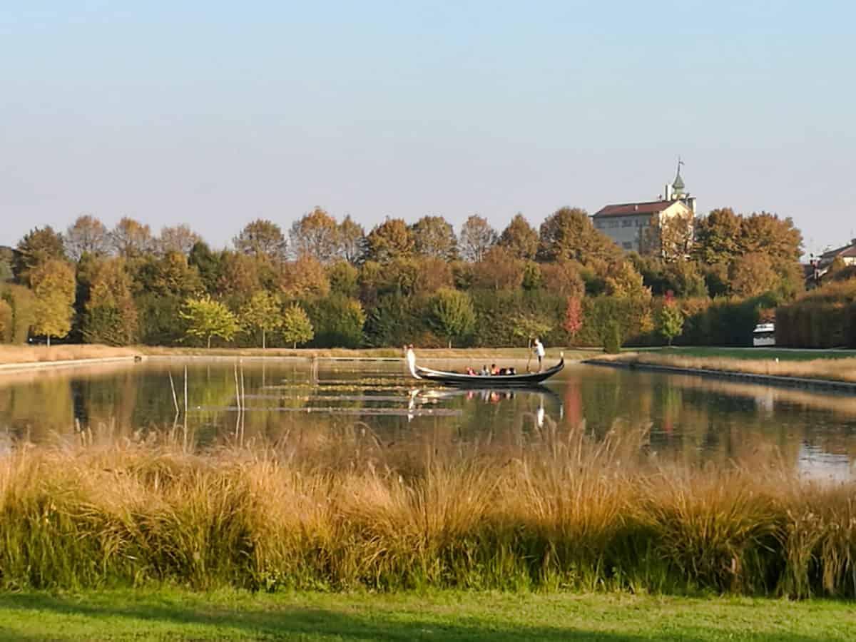 Parc national, embarcation, nature, rivière, eau, herbe, paysage, lac, arbre, ciel, marais