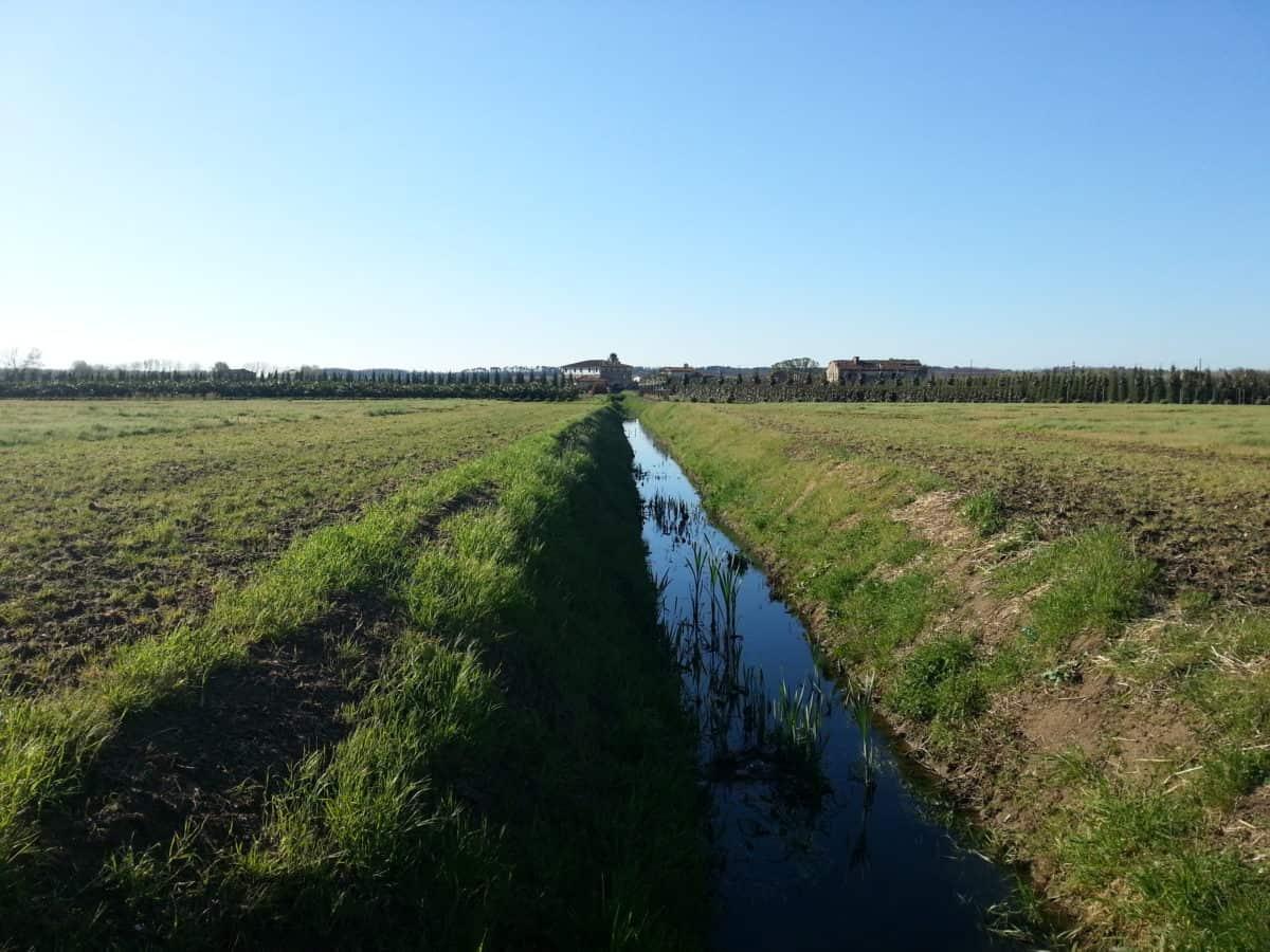 напояване, канал, природа, трева, небе, поле, селското стопанство, пейзаж