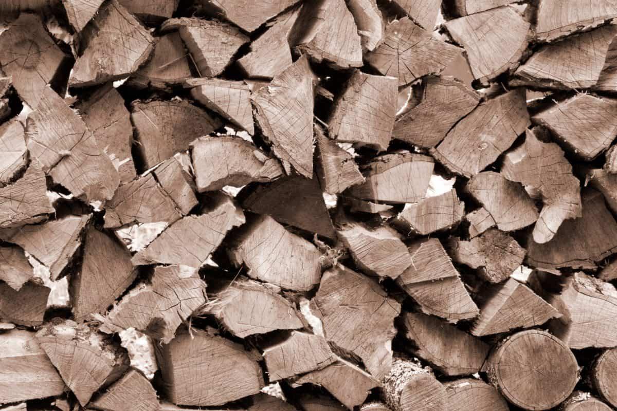 madera, patrón, textura, Resumen, leña, material, color marrón