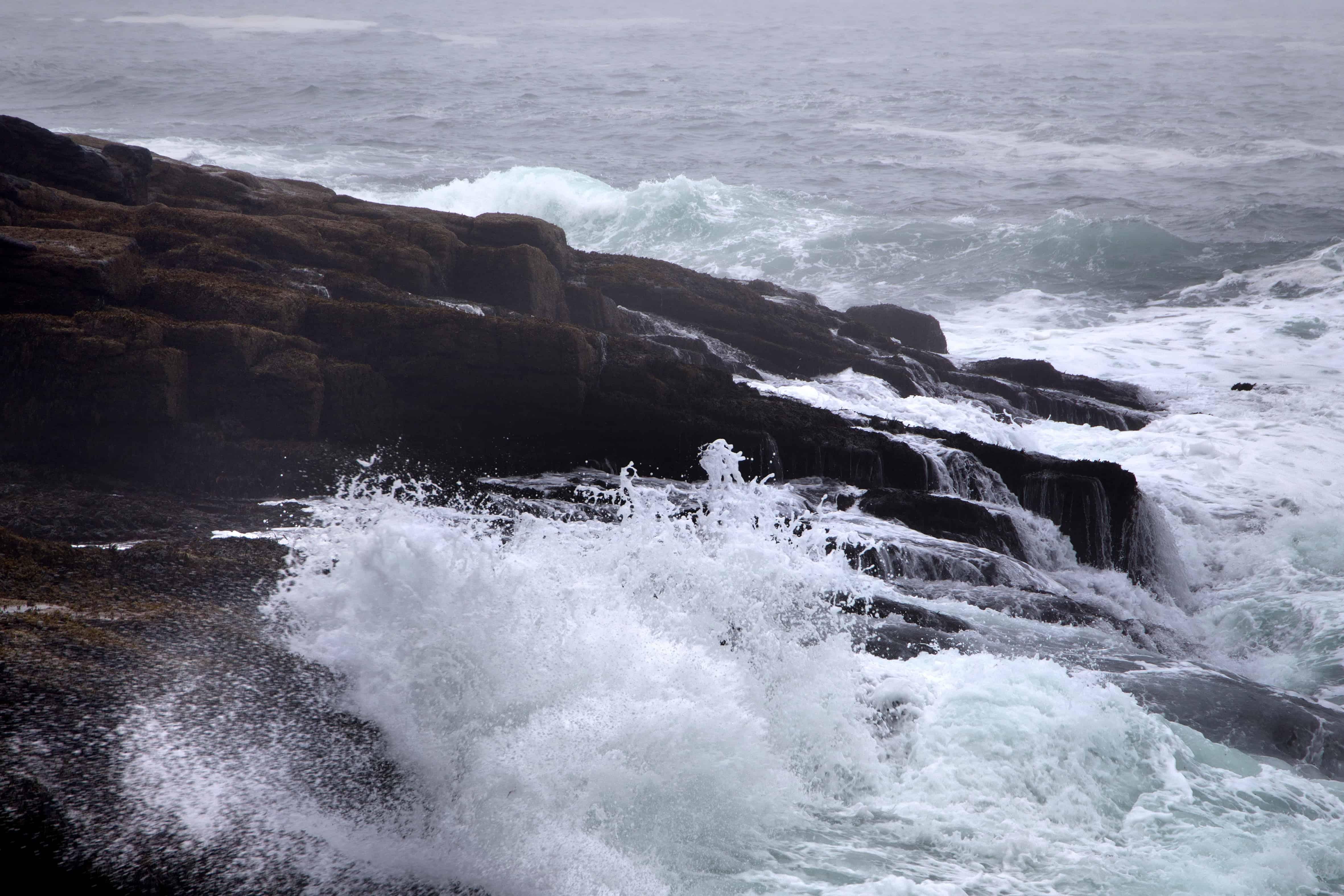 Free picture: water, foam, tide, seashore, landscape, sea