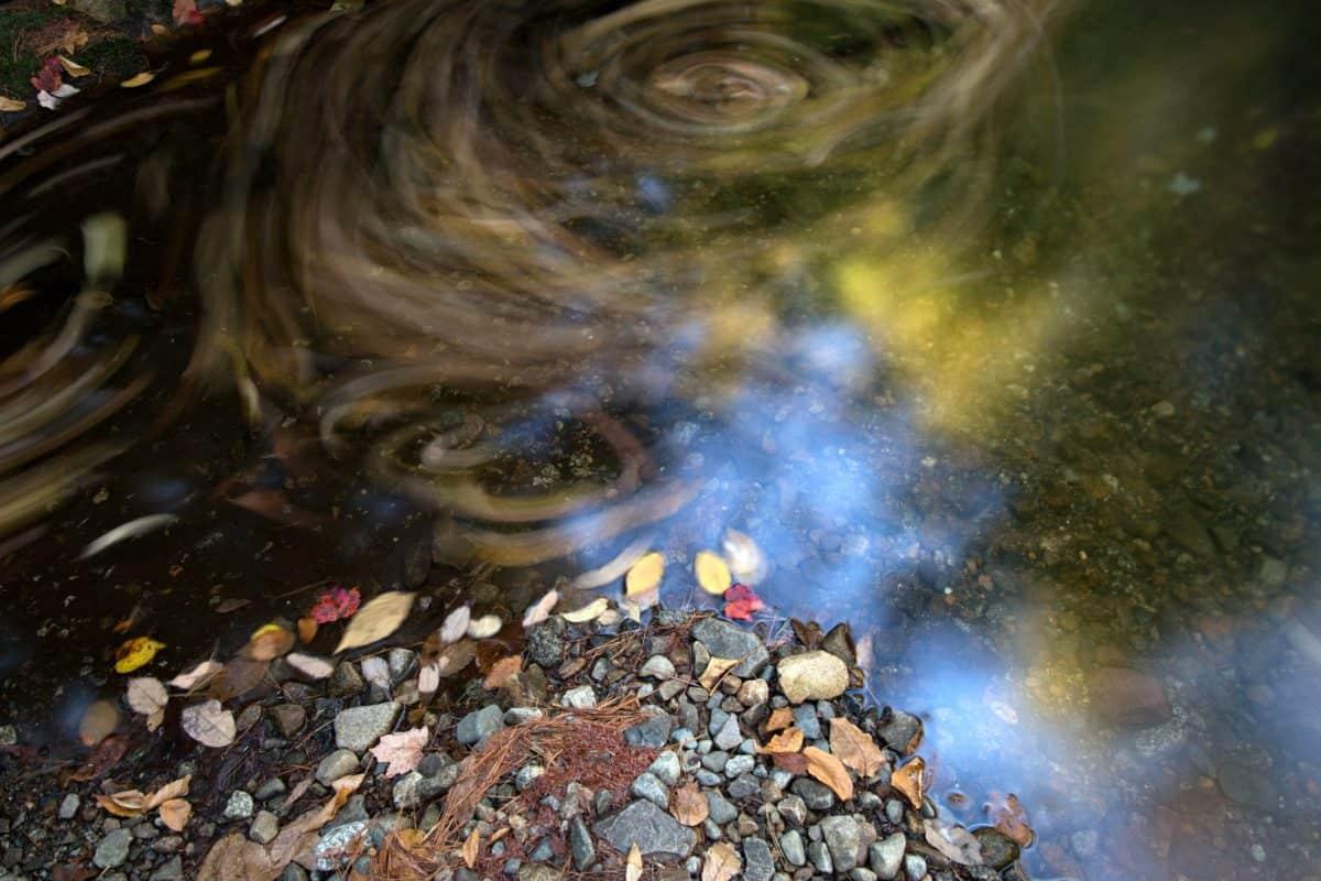 eau, ruisseau, automne, rivière, berge, Côte